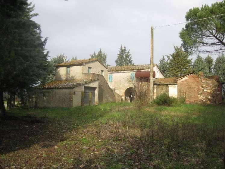 Azienda agricola, Civitella Paganico, da ristrutturare