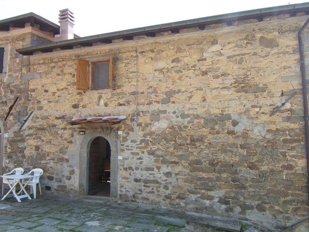 Casa semi indipendente, Sillano Giuncugnano, abitabile