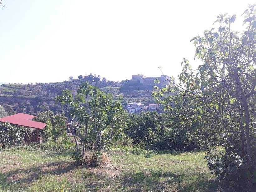terreno edificabile residenziale cosenza vendita 59.000 zona