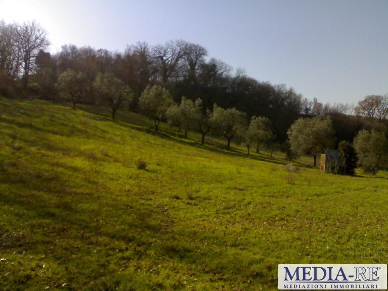 Terreno agricolo, Stroncone