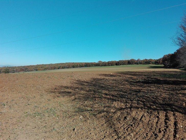 Terreno agricolo in Campagna Snc, Tarquinia