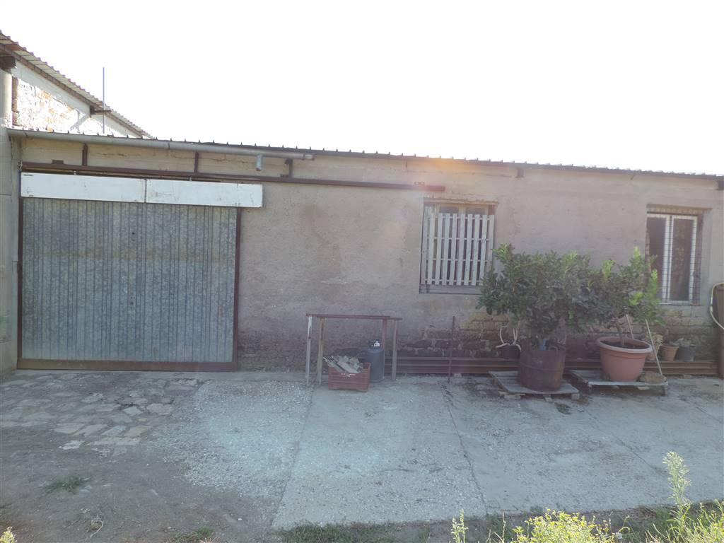 Magazzino, Monte Romano