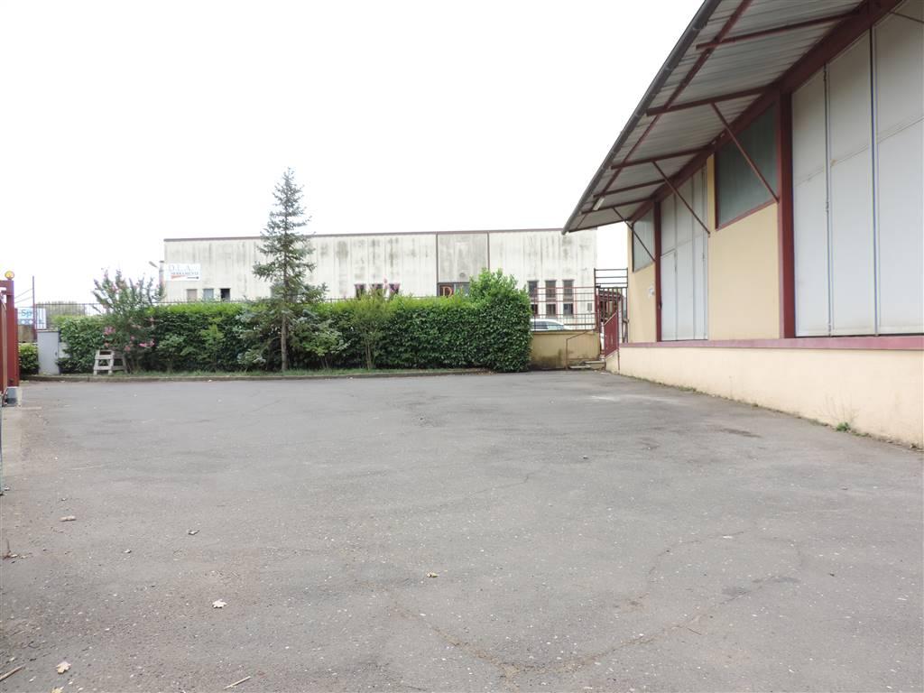 Capannone industriale, Viterbo