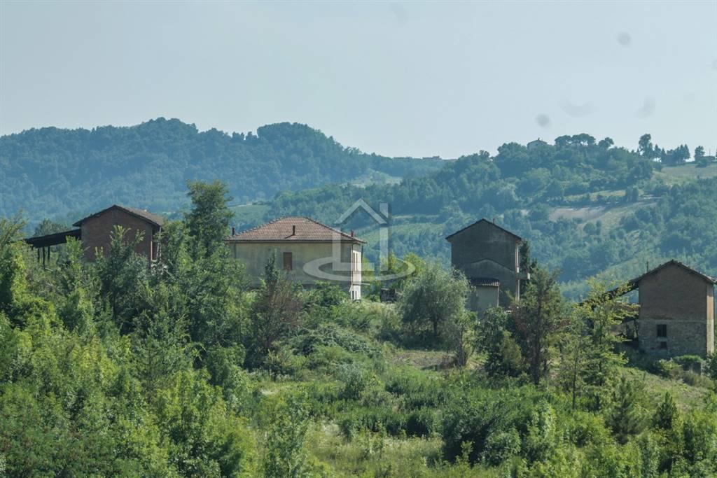 Azienda agricola, Volpedo, da ristrutturare
