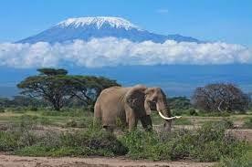Foto4 - Rif. NAIROBI