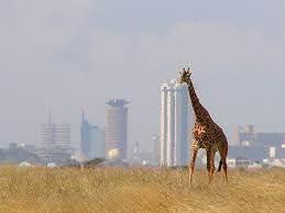 Foto1 - Rif. NAIROBI