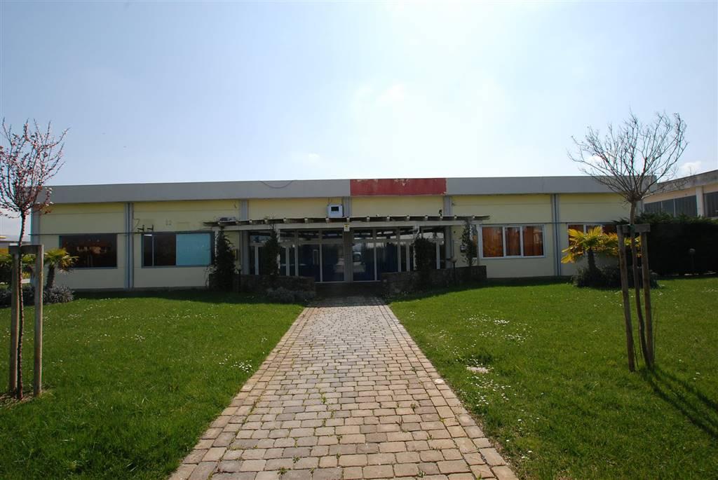Locale commerciale, Collesalvetti