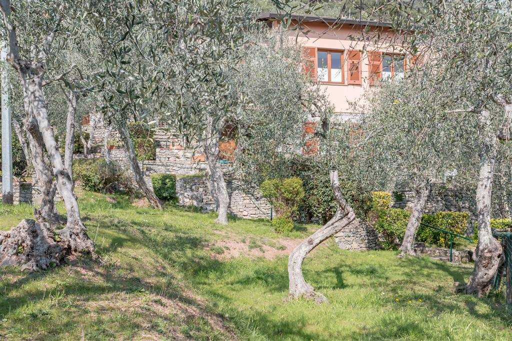 Affitto Villa Tellaro LERICI (SP)