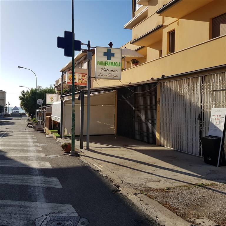 Attività commerciale in Via Del Tirreno, Marina Di Castagneto Donoratico, Castagneto Carducci