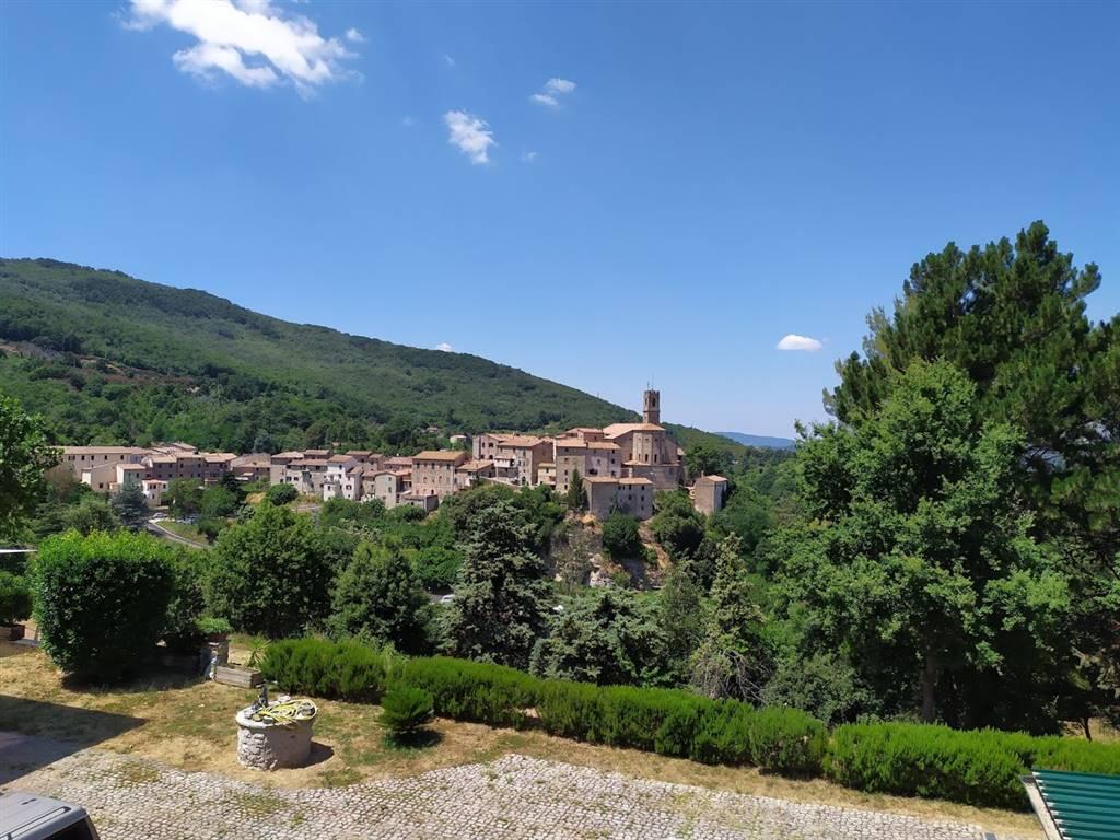 Appartamento indipendente, Sasso Pisano, Castelnuovo Di Val Di Cecina, ristrutturato