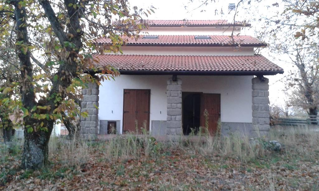 Villa, Monte Amiata Versante Grossetano, Castel Del Piano, ristrutturata