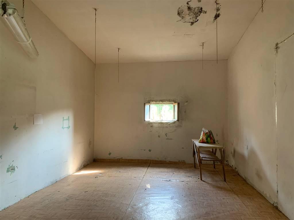 Rustico casale, Villafora, Badia Polesine, da ristrutturare