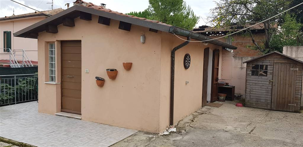 Monolocale, Pinocchio, Ancona