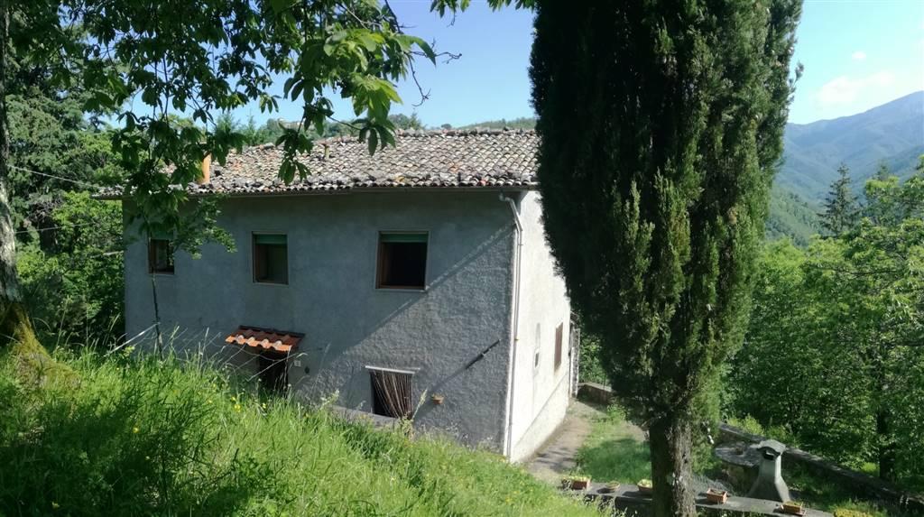 Casa singola, Coreglia Antelminelli, abitabile