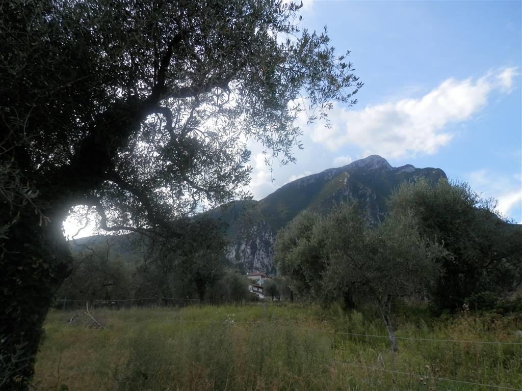 Terreno Edificabile Residenziale in vendita a Toscolano-Maderno, 9999 locali, zona Località: CABIANA, prezzo € 250.000 | PortaleAgenzieImmobiliari.it