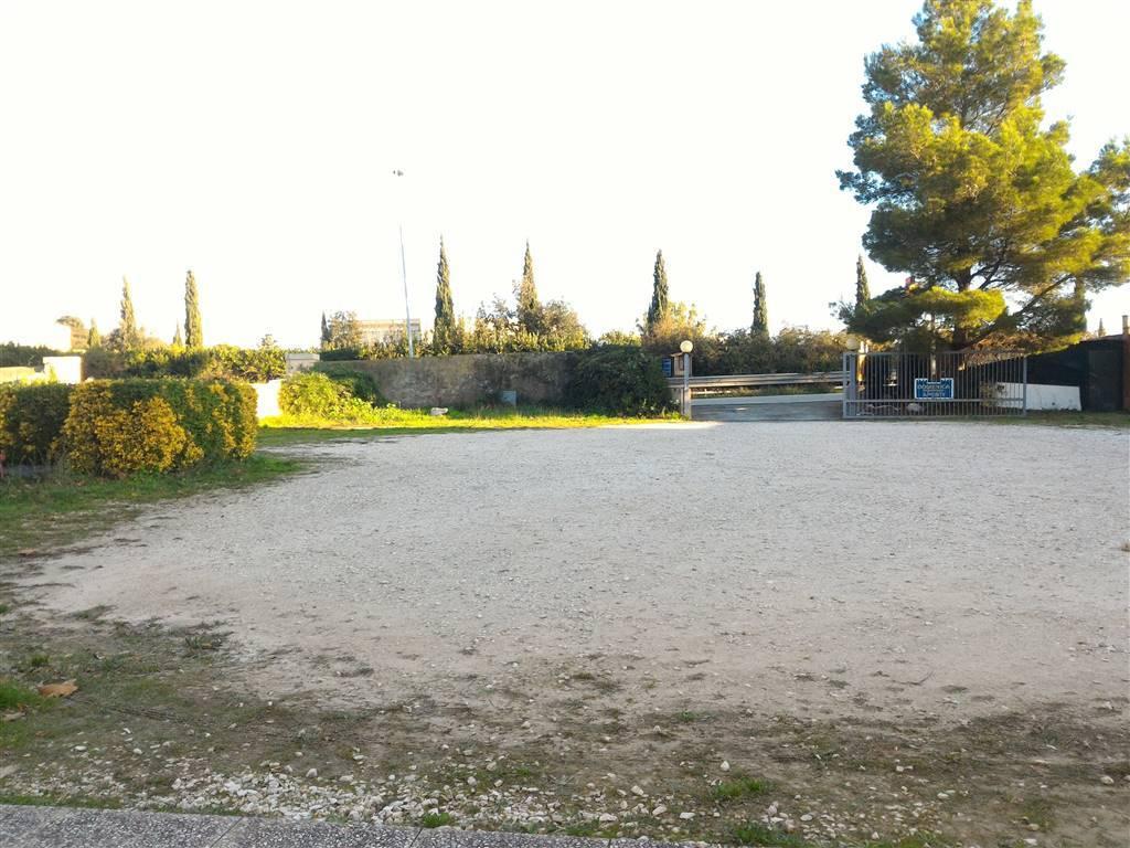 Locale commerciale, Livorno, abitabile